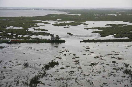 louisiana wetlands, oil and gas, flood, sue, hurricane, damage