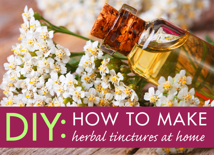 Diy How To Make Your Own Tinctures From Herbs At Home