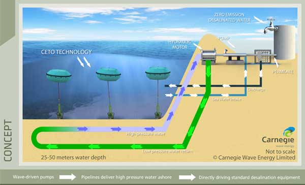 Carnegie Wave Energy to Launch the World's First Wave-Powered Desalination Plant
