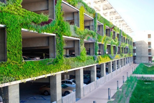 Green wall diptych by seasons natural engineering - Building a living wall ...
