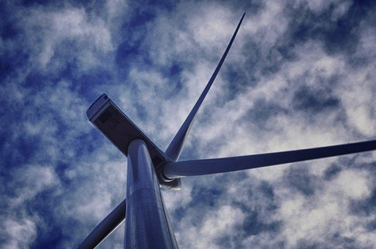 wind turbines, bird deaths, bird collisions, wind power, green energy, renewable energy, wind farms