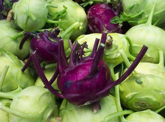purple kohlrabi, green kohlrabi, winter vegetables, winter greens
