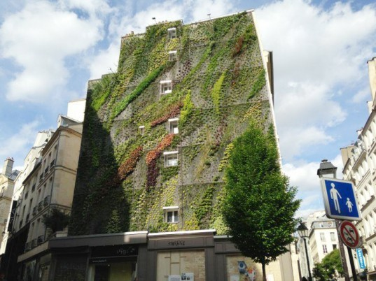 Patrick Blanc Unveils New Oasis Of Aboukir Vertical Garden