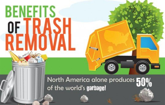 Infographic: The Environmental Benefits of Proper Waste Disposal