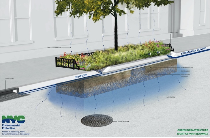 NYC DEP Unveils Plan to Add Stormwater-Filtering Green Infrastructure to Bed-Stuy Streets