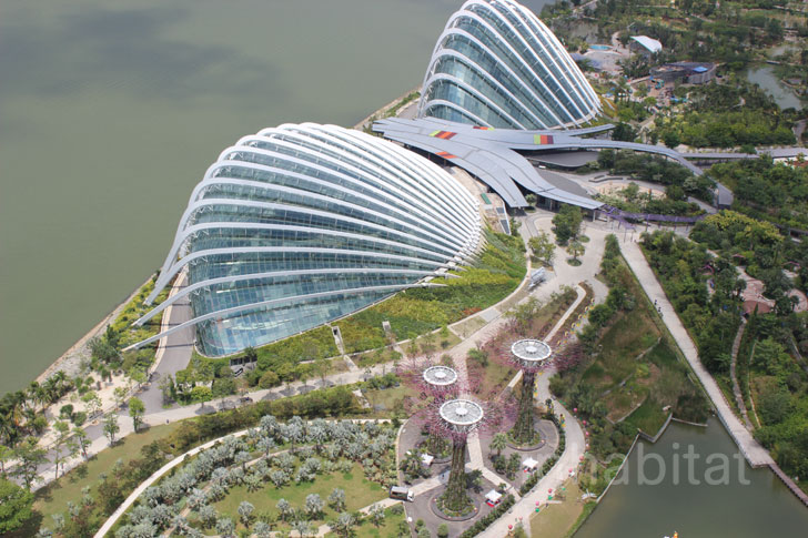 Photos Walk Atop The Treetops At Singapore 39 S Gardens By The Bay Inhabitat Green Design