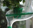 The planTree Hydroponic Cultivator Helps Households Grow Organic Food Indoors