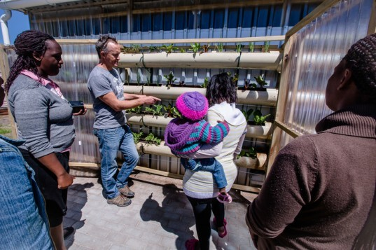 green design, eco design, sustainable design, Touching Earth Lightly, Gege Creche, City of Capetown Environmental Resource Management Department, Andrew Lord, Stephen Lamb, Vertical garden, Handspring Theater Puppet Company, Ackerman Pick and Pay foundation