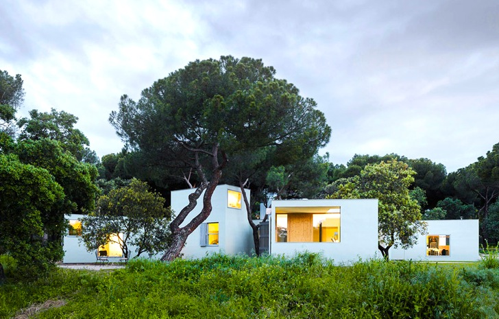 FRPO Architects Weave Modern MO House Through A Spanish Forest. Architecture