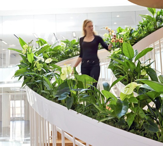 green design, eco design, sustainable design, Paul Cocksedge, Living Staircase, vertical garden, Ampersand London, living garden