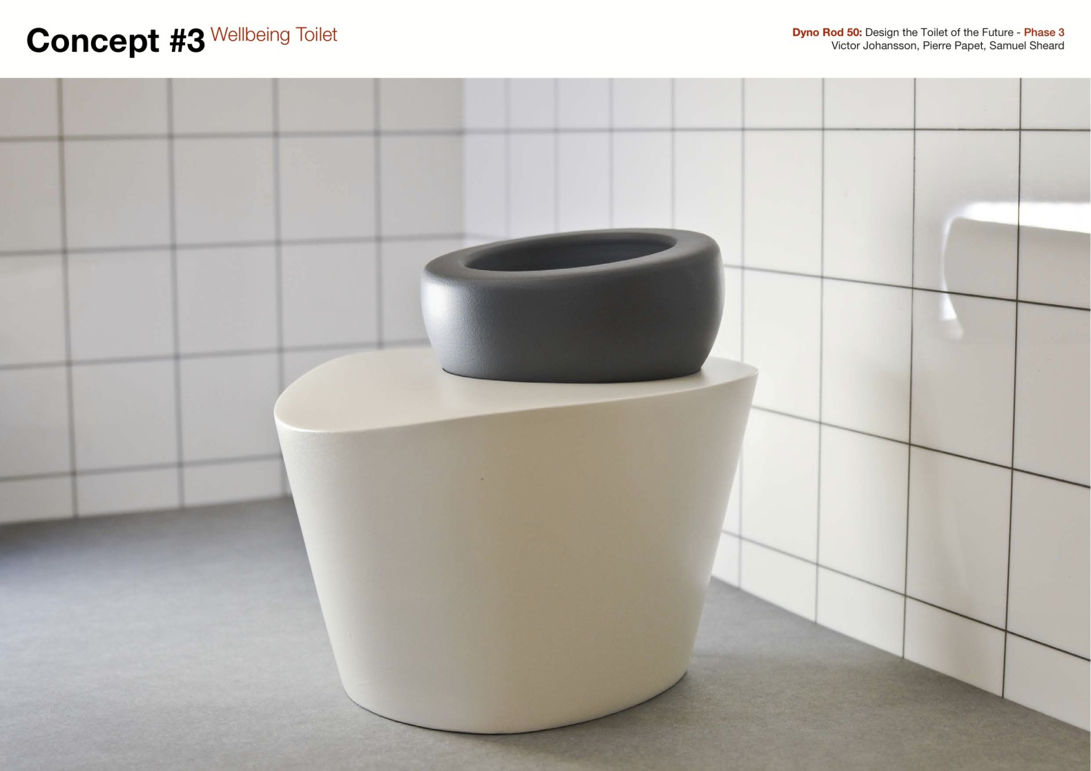 Ergonomically Correct Wellbeing Toilet Helps You Poop
