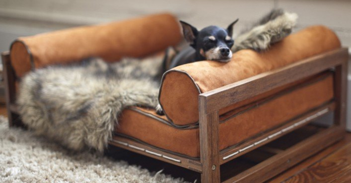 Architect Pets Makes Modernist Doggy Daybeds And Scratching Posts For  Design Loving Pets | Inhabitat   Green Design, Innovation, Architecture, ...