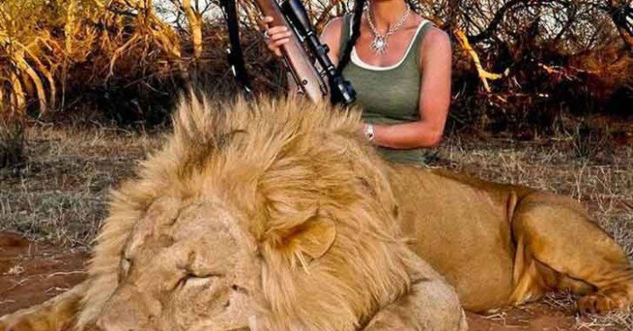 American Tv Host Kills Lion And Incites The Rage Of
