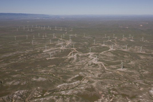 duke energy, duke energy renewables, wind farms, wind turbine, bird death, golden eagle, migratory birds, wyoming