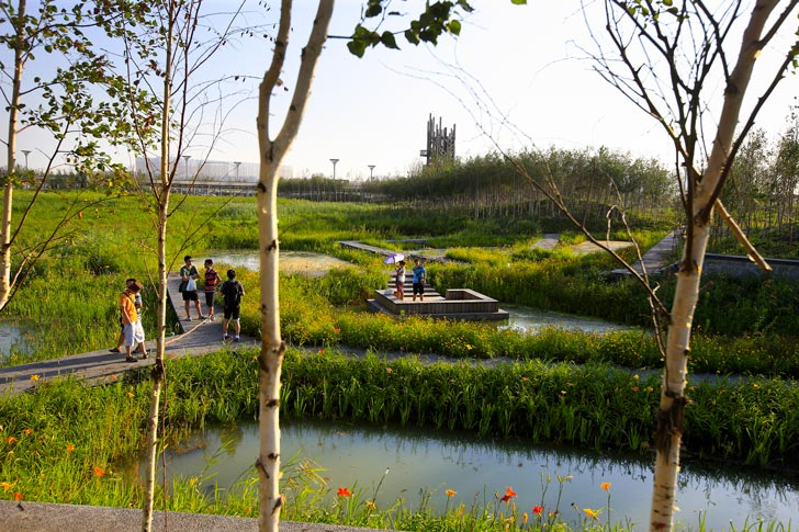 Qunli stormwater wetland park stores rainwater while for Stormwater pond design