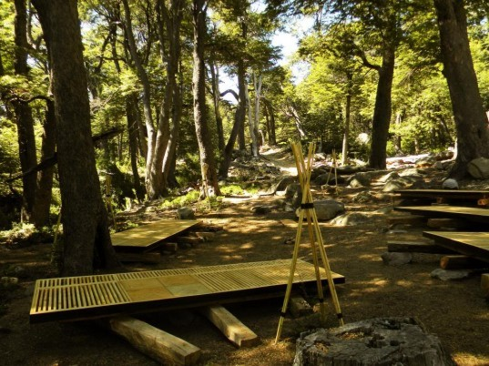 Arborama, forest installation, forest art, forest design ,University of Talca Chile School of Architecture
