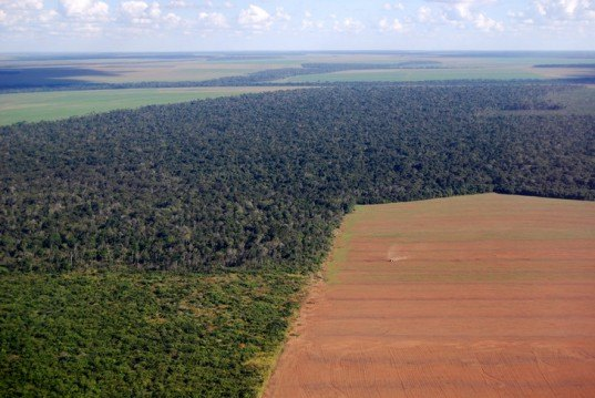 Amazon, deforestation, esa, european space agency, brazil, canopy loss, environmental destruction, boca do acre