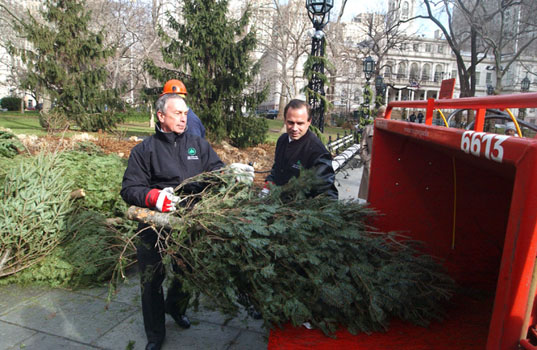 Recycle Your Christmas Tree at MulchFest 2017 | Inhabitat - Green ...