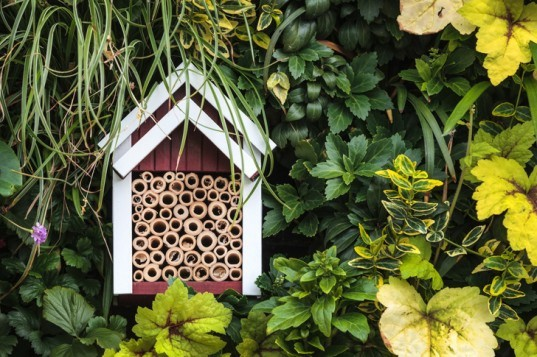 Insect hotel, bug hotel, bug condo, insect condo, insect habitat, bug home