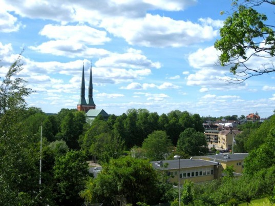 Pine Cones, Moss and Rotten Food Fuel One of Europe's Greenest Cities
