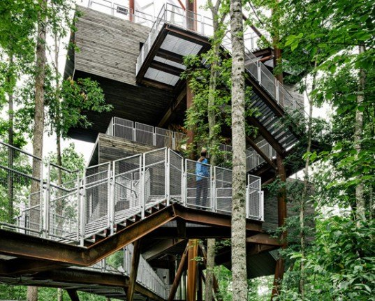 125 Foot Tall Treehouse Teaches Boy Scouts About True Sustainability