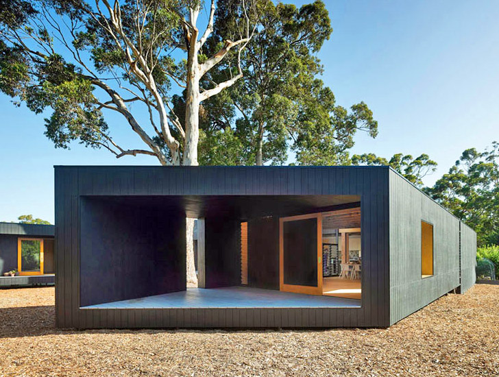 Asymmetrical karri loop house is built around indigenous for Home architects near me