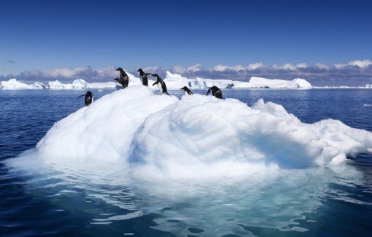 NAS and Royal Society Scientists Answer All Your Climate Change Questions in New Report