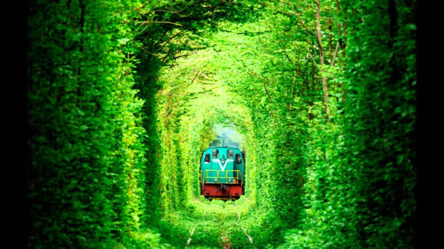 Natural Architecture, natural arch, Tunnel of Love, green tunnel, ukraine, train, Architecture, Botanical