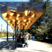 Public Architecture and Communication, Tree-Like Transit Shelters for UBC, University of British Columbia, urban design, transport design, bus stop design, GLULAM Canopy