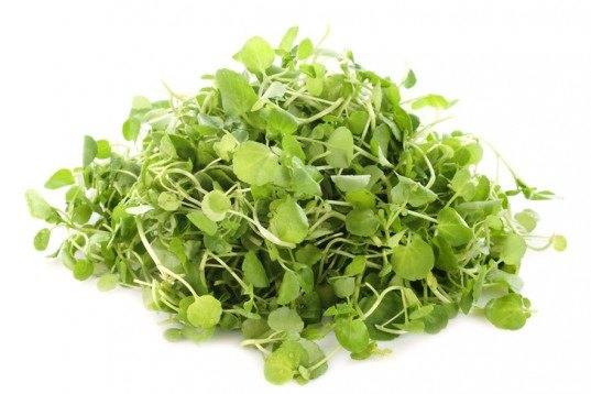 Perennial vegetables, perennial, vegetable gardening, garden, watercress, cress