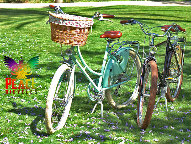 Buy A Stylish Peace Bicycle And Youll Also Donate Towards Buying Bike To Child In Need