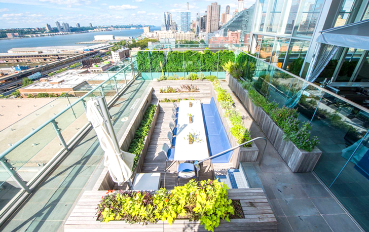 Eat Inside Of A Swimming Pool At This Rooftop Farm In Manhattan