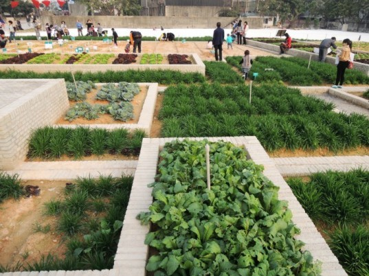 Value Farm, Thomas Chung, sustainable agriculture, green design, urban farming, eco design, environmentally friendly design, china farm, irrigation, rooftop farming
