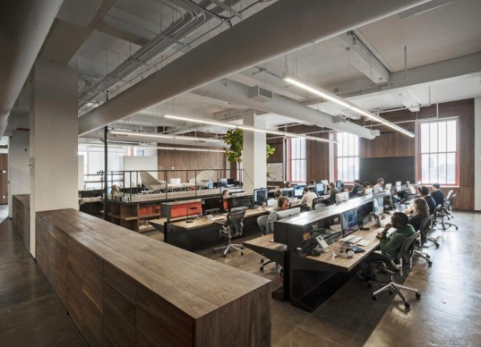 +ADD, Fifty Three, Paper, Renovation, offices, reclaimed wood, nature, daylighting, modern, sick building syndrome, New York City, IPad, Apple, architecture, Laura Gonzalez Fierro, Georg Petschnigg