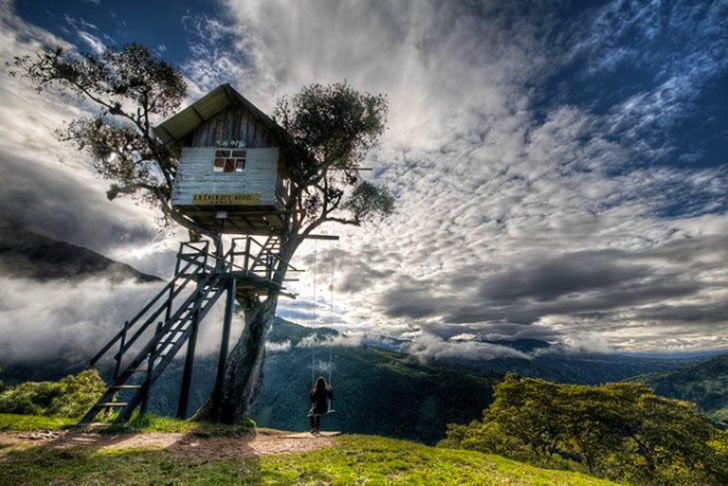 Insane Tree Houses france's oldest tree, alive since louis ix, hides treehouse