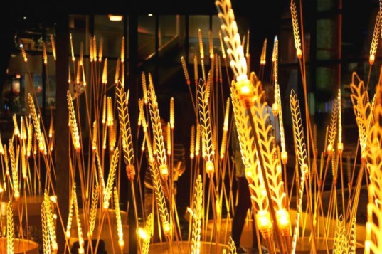 Royal Rice Field, Apostrophys, rice, rice field, thailand, lighting installation, led lights