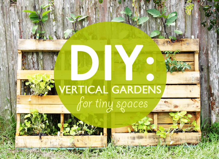 Grow Up How to Design Vertical Gardens for Tiny Spaces Pipe
