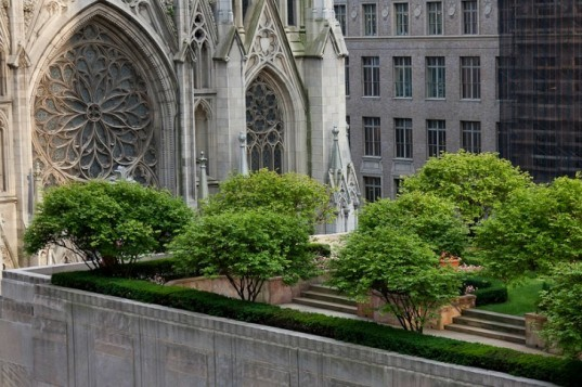 Marvelous Green Roof, New York State Assembly, Stormwater Infrastructure Matters  Coalition, Green Tax Incentives