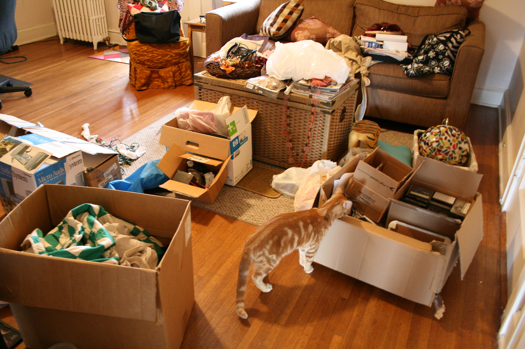 6 Green Spring Cleaning Tips To Help Organize And Simplify Your Home Inhabitat Green Design