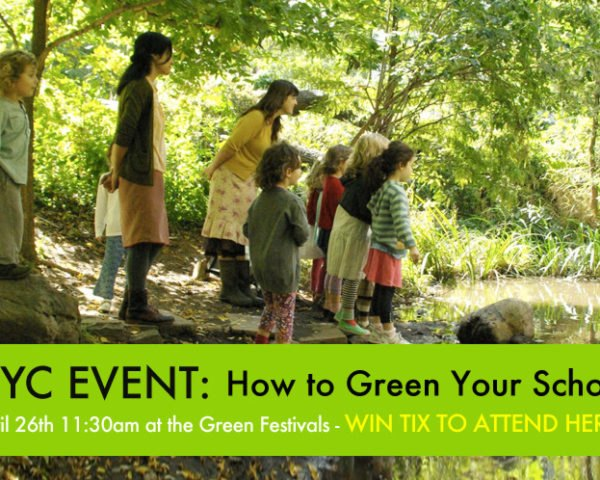 How to Green Your School, How to Green Your Child's Education, Green Education, Green School, Eco School Environmental Literacy, CELF, Healthy Food in Schools