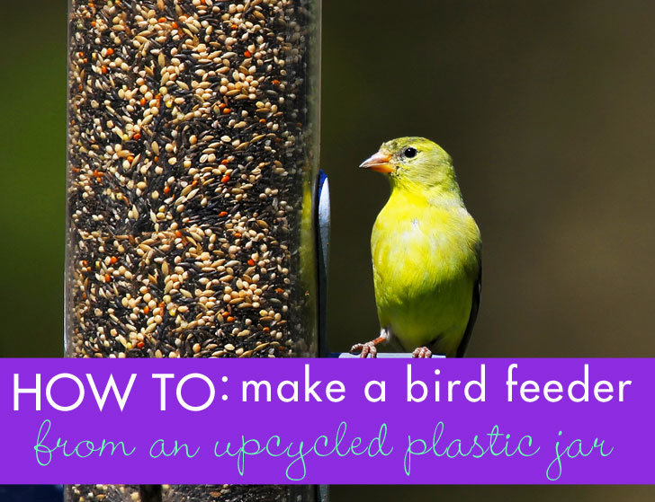 How to make a bird feeder from recycled materials for How to make a bird feeder using a plastic bottle