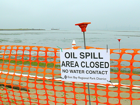 National Energy Board , National Energy Board oil spill, environmental disasters, oil company quotes, oil company spills, environmental destruction, Kennedy Stewart, Kinder Morgan, Kinder Morgan oil spill, Kinder Morgan expanding pipeline, Canada oil industry, Canada oil spill, oil spill, benefits of oil spills, oil spills are good, Kinder Morgan oil spills quote,
