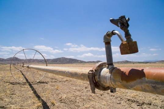 California's Severe Drought Will Cost the Agricultural Industry Nearly $2 Billion