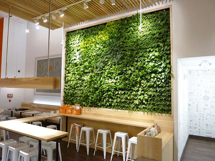 GSky Spruces Up Organic Avenueu0027s New Flagship Store With A Verdant Living  Wall | Inhabitat   Green Design, Innovation, Architecture, Green Building
