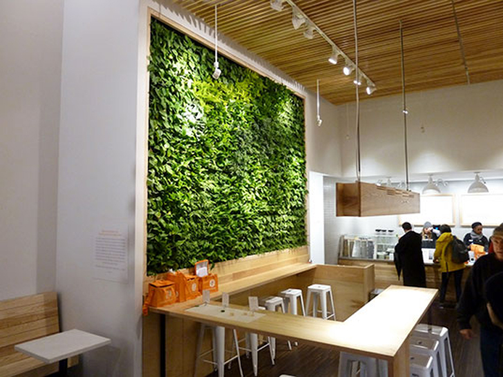 Green your walls with schiavello vertical gardens inhabitat green your walls with schiavello vertical gardens inhabitat green design innovation architecture green building aloadofball Gallery