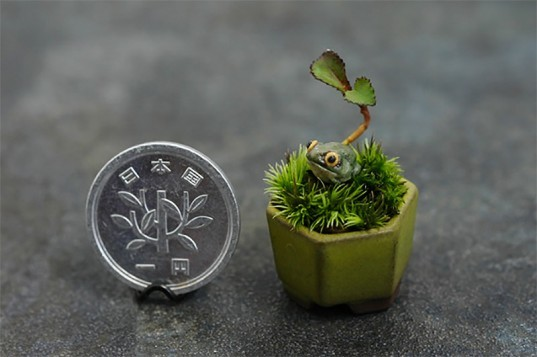 miniature bonsai trees, cho-mini bonsai, gardening, botanical, japanese design, japanese bonsai, trends in japan, tiny bonsai trees, miniature bonsai trees,