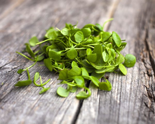 watercress, health, nutrients, nutrition, rich, healthy,