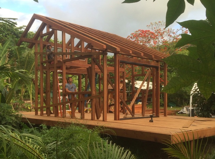 Artist builds gorgeous 200 sq ft house out of 25 000 - Make your house a home ...