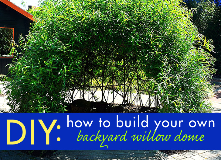 Diy Bio Tecture Build Your Own Backyard Living Willow