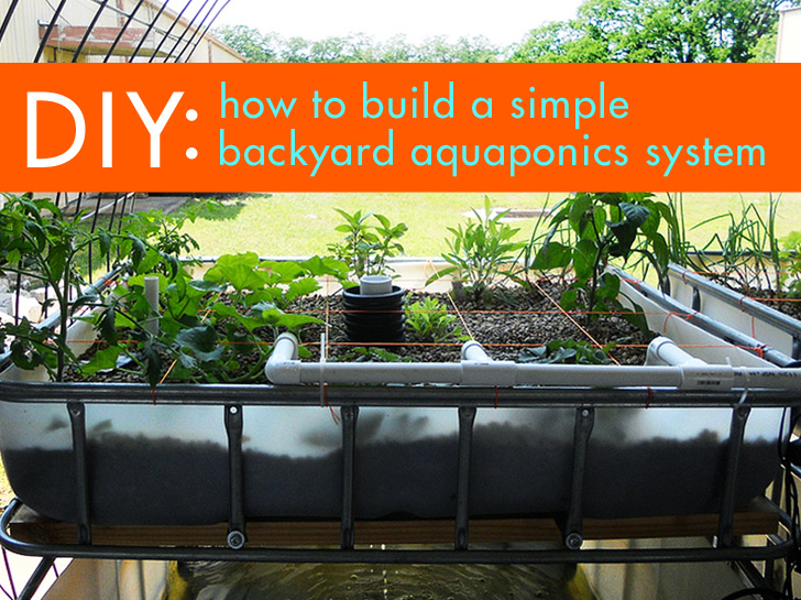 Diy Everything You Need To Know To Build A Simple